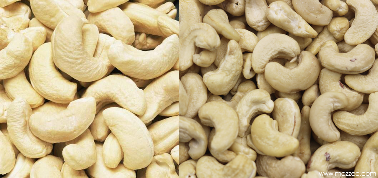 Cashews Nuts