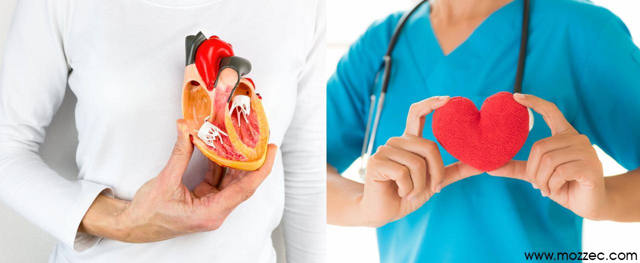 coconut vinegar heart health